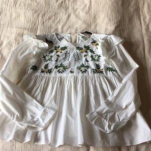 Zara embroidered peplum ruffle long sleeve